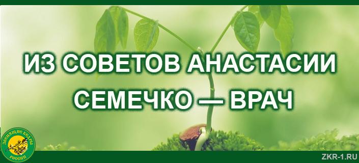 11.-Semechko-vrach
