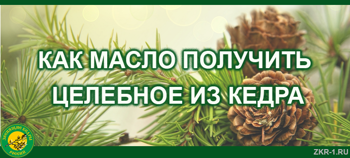 30-KAK-MASLO-POLUCHIT-TSELEBNOE-IZ-KEDRA